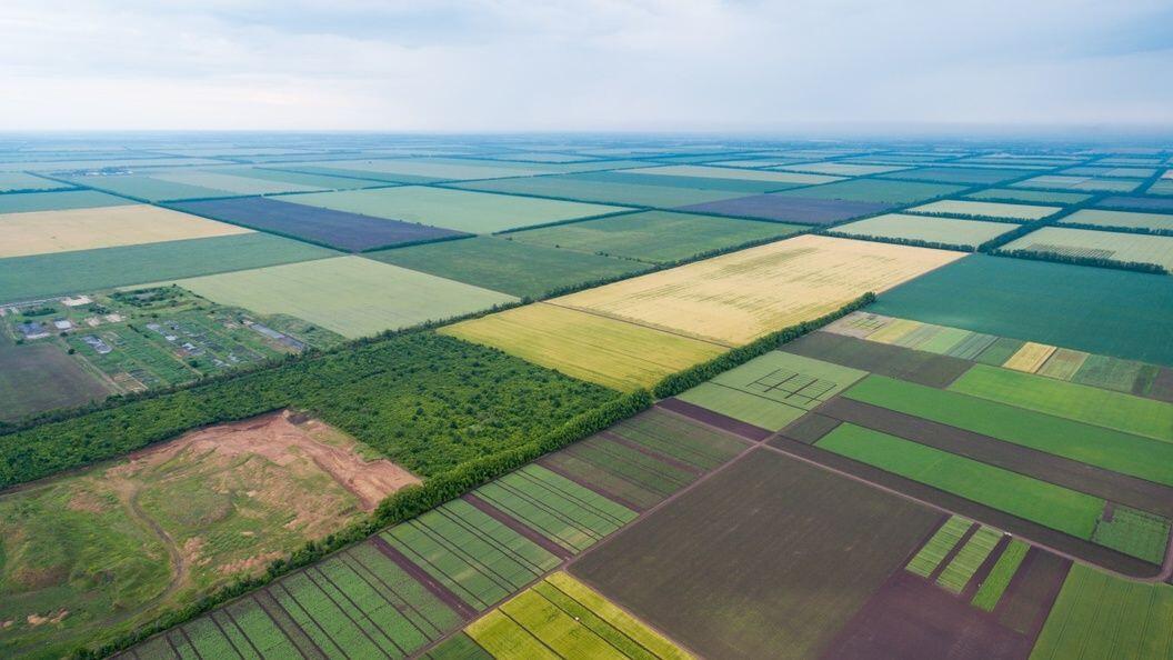 Скільки коштуватиме 1 гектар землі