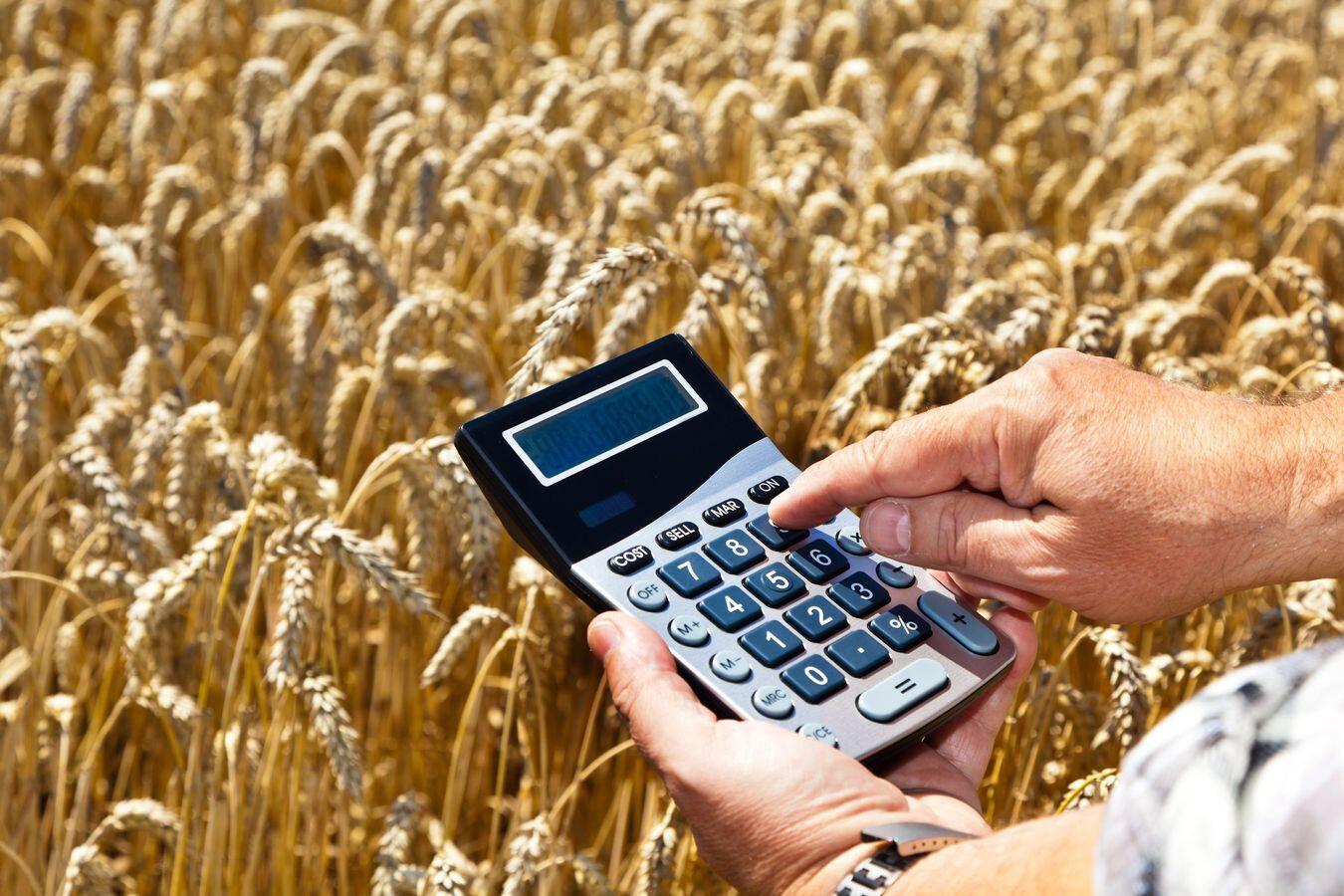 Держпрограма здешевлення кредитів стане зручніша для фермерів
