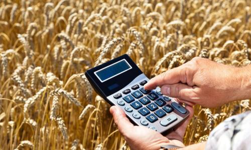 Госпрограмма удешевления кредитов станет удобнее для фермеров
