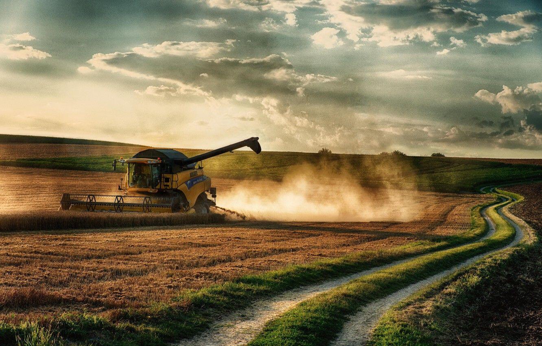 74,3 млн тон - в Украине установлен очередной рекорд по валовому сбору зерна!